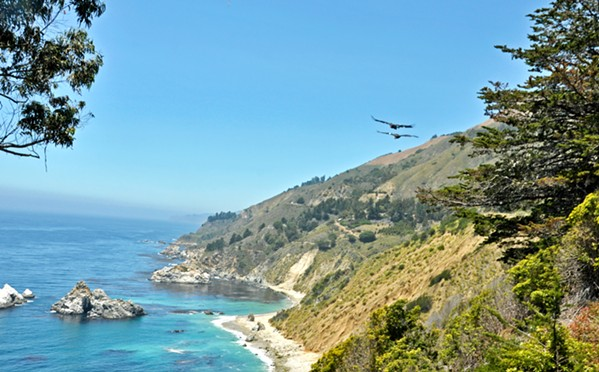 BIRD SIGHTING A group of condors soars above the Big Sur coastline near McWay Falls in 2015. - PHOTO BY CAMILLIA LANHAM