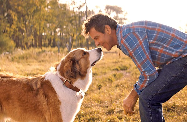 "PROMISE On his deathbed, Bailey (left, voiced by Josh Gad) promises his ""boy"" Ethan (Dennis Quaid) to return to care for Ethan's granddaughter, in A Dog's Journey. - PHOTO COURTESY OF DREAMWORKS"