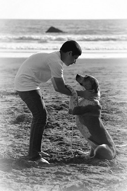 PURE Love, Always captures a tender moment between photographer Trisha Butcher's son and dog. - PHOTO COURTESY OF TRISHA BUTCHER