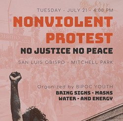 NO JUSTICE NO PEACE A July 21 protest led to an organizer's arrest following two incidents with vehicles and protestors. - SCREENSHOT FROM INSTAGRAM