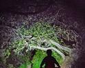 SLO City Council approves 'night hiking' pilot program