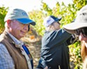 Grapes and grades: Allan Hancock College's campus winery gives students opportunities to learn the art of making and selling award-winning wine
