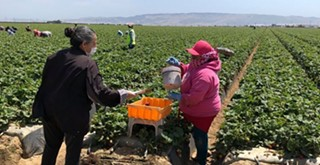 Family Service Agency to provide health support for Santa Barbara County farmworkers