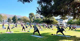 Fitness groups move their classes to city parks to keep businesses, communities healthy during pandemic