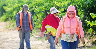Shandon farmworker housing project—largest in recent history—gets approval