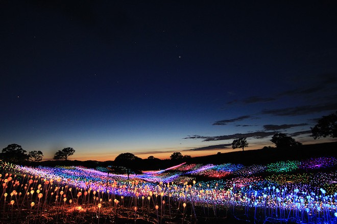 Sensorio in Paso Robles, California is now extended through January 2, 2022. The immersive exhibit includes internationally acclaimed artist Bruce Munro's Light Towers as well as Munro's 15-acre Field of Light (pictured here).