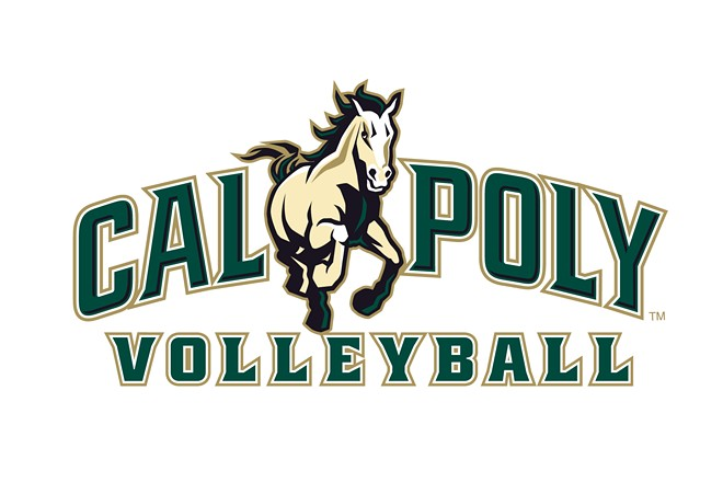 volleyball_wordmark.jpg