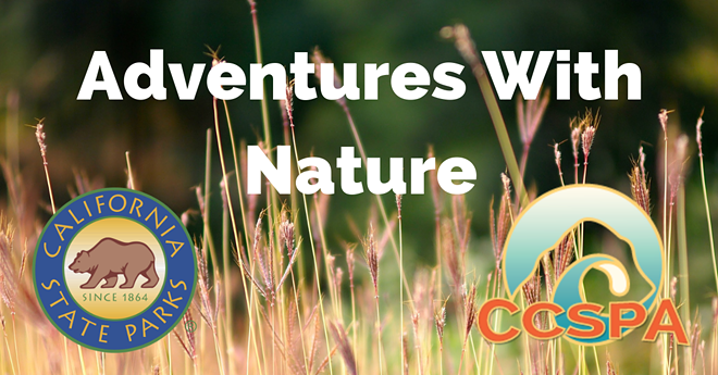 adventures_with_nature_fb_banner.png