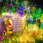 Get festive: The Central Coast puts up holiday cheer every year