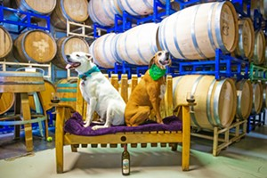 DRINKING WITH DOGS Kona (left) and Duke (right) may be around if you stop by Kelsey See Canyon Vineyards at the right time. And if they're not there, someone else's dog probably is, or you can always bring your own pooch to the Best Dog-Friendly Winery around. - PHOTO BY JAYSON MELLOM