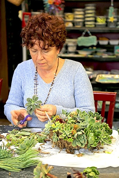 MADE WITH LOVE:  Diane Toman works on a handmade succulent wreath at the Design Studio in Los Osos. - PHOTO BY DYLAN HONEA-BAUMANN