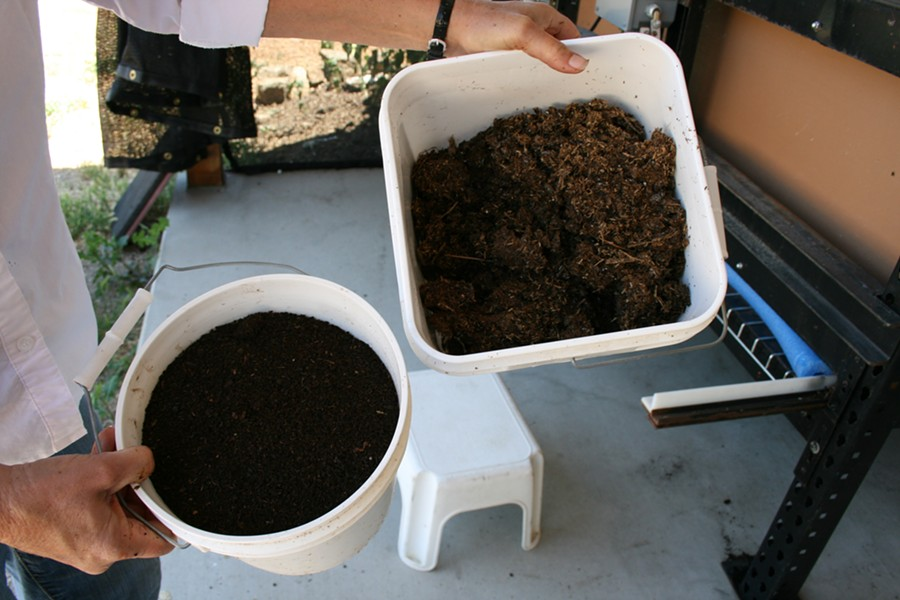 GARDEN ALCHEMY:  Christie demonstrates the difference between her starting compost (right) and the end product (left): Black Diamond Vermicompost. Brown and crumbly, the initial compost is fed to hundreds of thousands of worms, which travel through the muck and leave beneficial worm poop, or castings. The result is a dark, rich soil packed with plant-loving nutrients. - PHOTO BY HAYLEY THOMAS