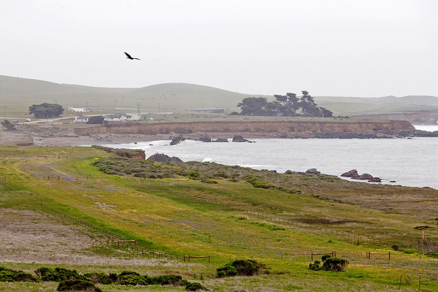 the Piedras Blancas Motel site into a campground, cabins, and refurbished motel rooms. - PHOTO BY JAYSON MELLOM