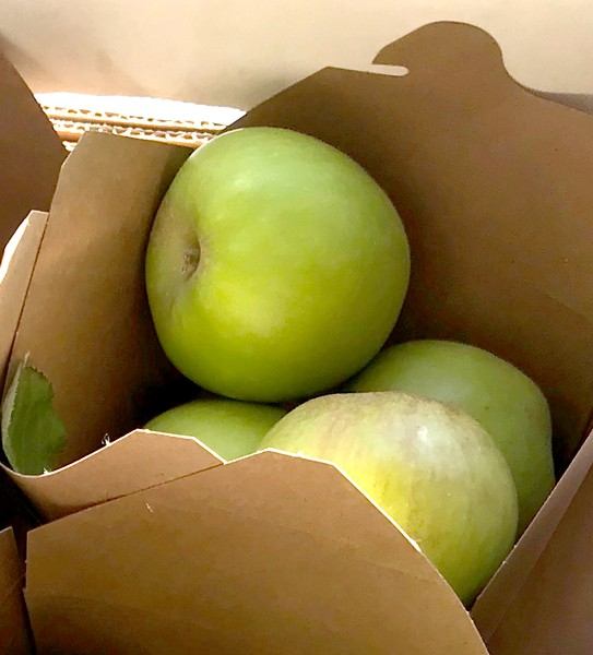 APPLE SEASON STARTS NOW Mike Cirone's farmers' market boxes will now offer oodles of apples—Pippins, Gravenstein, and Golden Delicious apples for homemade applesauce. Locals can also find apples that are great for longer storage, including the Gold Rush, Pink Lady, and Fuji. - PHOTOS BY BETH GIUFFRE