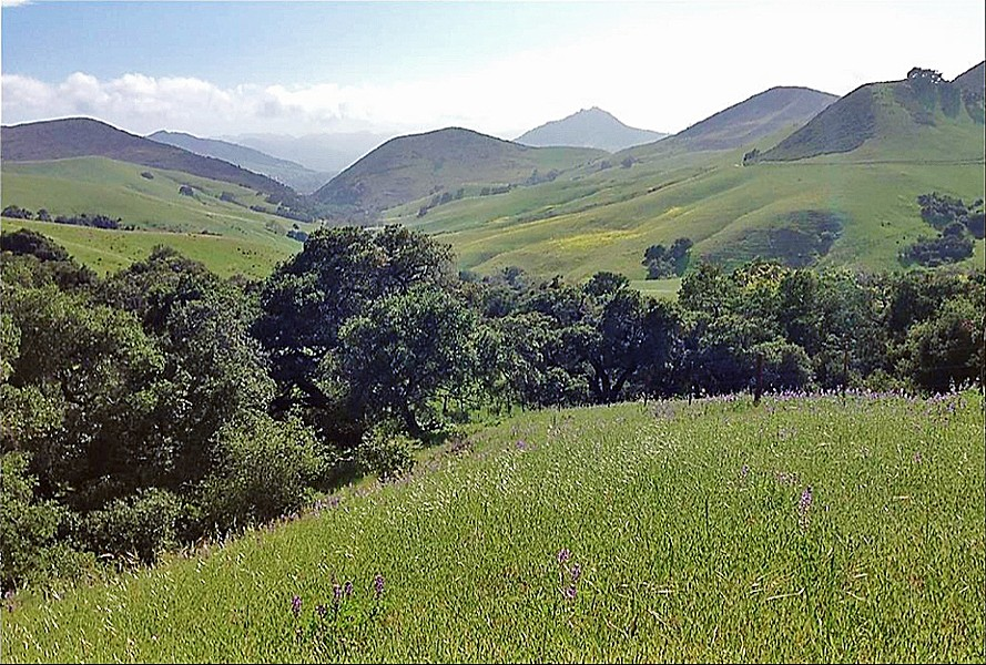 COMING SOON The 266-acre Miossi Open Space, and its network of trails near Poly Canyon, is expected to open to the public in the spring or summer. - SCREENSHOT COURTESY OF THE CITY OF SLO
