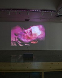 CUESTA COLLEGE SCREENS AVANT GARDE VIDEO ART IN NEW EXHIBIT