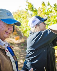 FIELDWORK Ric Fuller (left), head of Allan Hancock College's viticulture operations, takes a break during the Oct. 25 harvest at the Santa Maria campus vineyard. Students work harvests either as volunteers or as part of their viticulture classes.