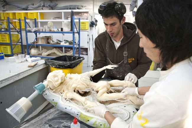 THE BIRTH OF A MONSTER :  An alien creature from Niell Blomkamp's District 9 is carefully removed from its mold by employees at Weta's mold shop. - PHOTO BY STEVE UNWIN