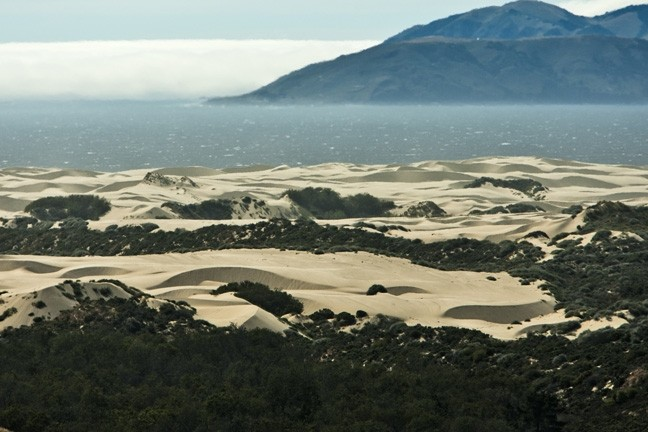 DUNE DUSTUP:  After years of unfruitful squabbling over regulation of the OHV riding area of the Oceano Dunes, stakeholders on different sides of the issue are moving toward change with a lawsuit and dust control measures. - FILE PHOTO BY STEVE E MILLER