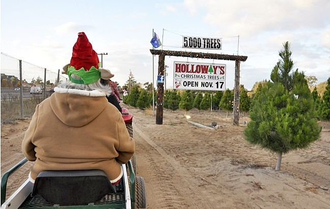 """FFT:  A Fast Farm Tour at Holloway's Christmas Tree Farm takes ATV """"train"""" passengers around the farm, past trees that will eventually be cut down by families who want to take them home for Christmas. - PHOTO BY CAMILLIA LANHAM"""