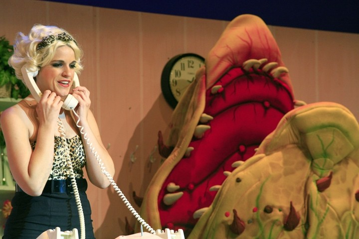 'CALL BACK IN THE MORNING' :  Audrey (Jennifer Malman) fields phone calls at Mushnik's Skid Row Florists while Audrey II awaits her next victim. - PHOTO BY SANDRA CORTEZ