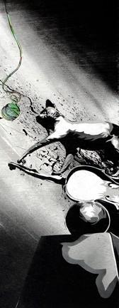 FELINE FIDDLIN' : - IMAGE BY DAN WOEHRLE