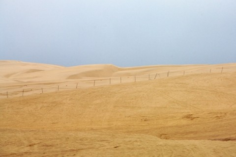 SANDS OF TIME :  The fate of 584 acres in the Oceano Dunes is still undecided. - PHOTO BY JESSE ACOSTA