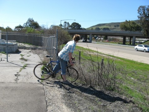 ALMOST THERE :  Cyclists got a taste of the Bob Jones trail after its unveiling on Feb. 15. - PHOTO BY KYLIE MENDONCA