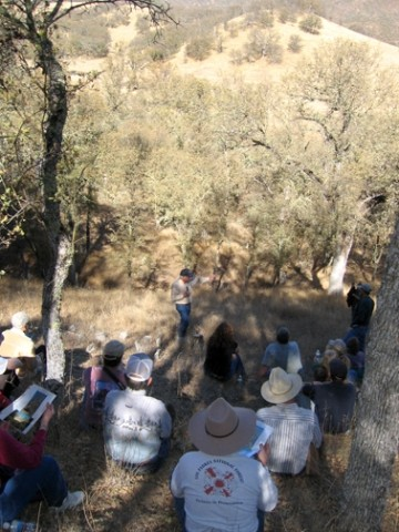 "SAVING THE OAKS :  Members of SLO Countys Oak Resources Committee gathered at the Avenales Ranch earlier this month for an educational program sponsored by UC Cooperative Extension, ""Oaks: The Next Re-Generation."" - PHOTO BY KATHY JOHNSTON"