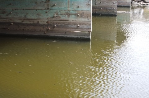 DISMAL PISMO :  Pismo Creek, which travels directly into the ocean, is consistently nasty-looking and frequently posted with warnings that contact with the water is unsafe. - PHOTO BY JESSE ACOSTA
