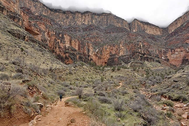 LONG WALK:  A wall of clouds blocks the top of the Grand Canyon from view as I stand near the Indian Garden Campground on Dec. 23, 2016. In 3,000 vertical feet and 4.5 miles of trail, I'll be at the top. - PHOTO BY CAMILLIA LANHAM