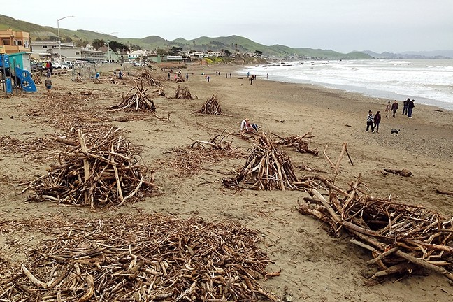 DRIFTWOOD GALORE:  Driftwood stirred up by the recent storms at the Cayucos pier was pushed into nice neat piles. - PHOTO BY PETER JOHNSON