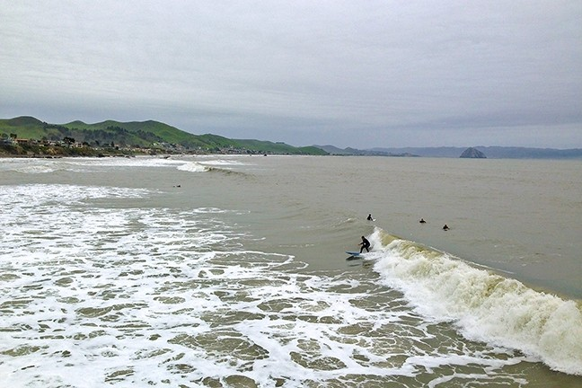 SURF'S UP :  About a half-dozen surfers enjoyed good-sized waves at the Cayucos pier on Feb. 19 during a much-appreciated break in the rain. - PHOTO BY PETER JOHNSON