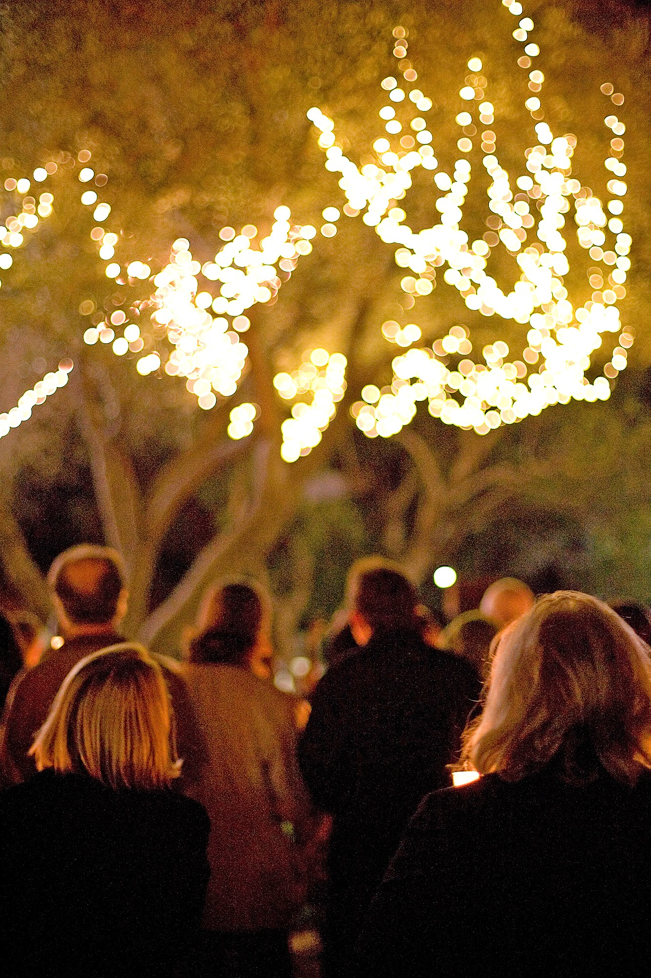 9ba238d3b54a click to enlarge REMEMBRANCE The Hospice of San Luis Obispo County has  created an event where the community can