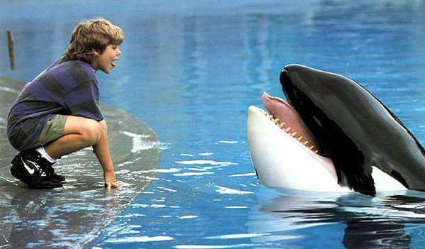 A BOY AND HIS WHALE Free Willy tells the heartwarming story of Jesse (Jason James Richter) and Willy the orca whale (Keiko). - PHOTO COURTESY OF WARNER BROS. PICTURES