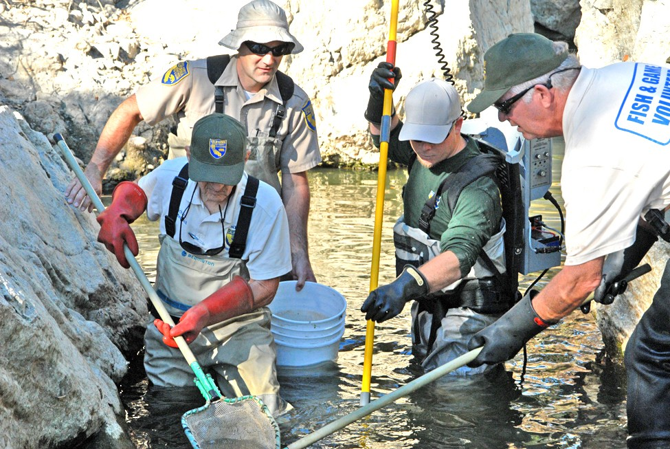 The California Department Of Fish And Wildlife Works To Bring A