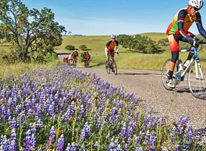 Delayed due to COVID-19, the 12th annual Tour of Paso bike race will be held on Nov. 1