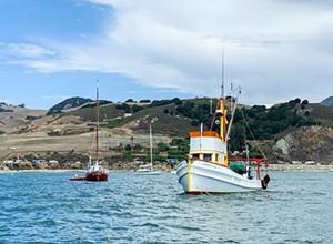 Harbor dispute: The Port San Luis Harbor District debates its law enforcement's use of force policies