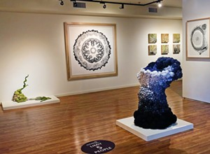 Wildling Museum in Solvang showcases Central Coast artists during its Summer Open House