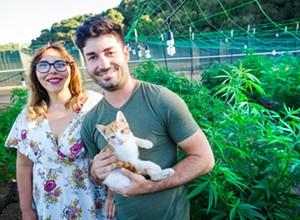 County sues Megan's Organic Market to shut down cannabis grow