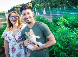 Court backs Megan's Organic Market in county's cannabis lawsuit