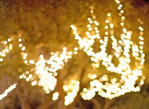 Hospice of SLO County gives you a chance to Light up a Life this holiday season