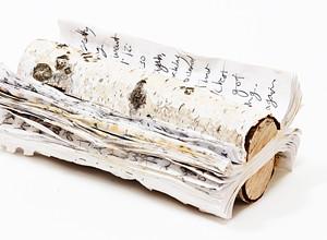 Cuesta professor turns personal journals into art