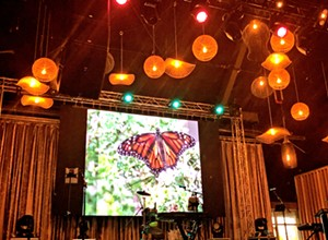 Butterfly Ball screens short films on monarch butterfly endangerment as kickoff to Wild and Scenic Film Festival