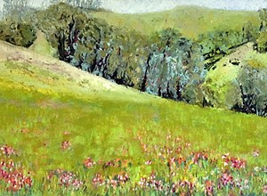 Impressionist pastel painter Carol Timson Ball captures the Central Coast in its best light at Park Street Gallery