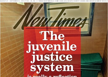 'The juvenile justice system is really a reflection of what's going on in the home ...'