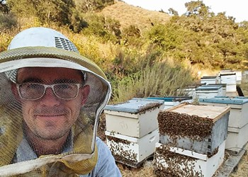 Beekeeper Jeremy Rose of CBC gets raw on honey, the bee biz, and the fate of his winged essential workers