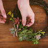 DIY Succulent Wreath Workshop @ Zaca Mesa Winery