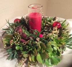 Create with succulents - Uploaded by Joan Martin Fee