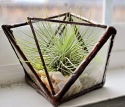 geometric glass terrarium - Uploaded by Lisa R Falk